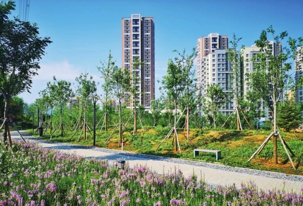 加大绿海运动公园,永定河滨水森林公园,东辛秤c东地块东区公共绿地